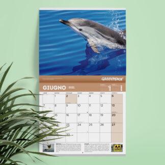 calendario greenpeace 2021